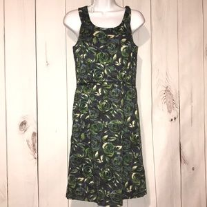Ann Taylor Loft 6 Roses dress